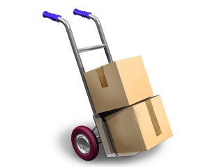 Trolley For Moving Furniture  Moving Services for Pampered Movers